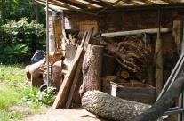 Das Holzlager des Bildhauers