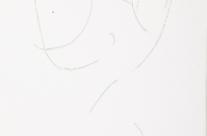 Schichtschnitte sind farbige Flachskulpturen