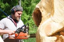 Baumstamm wird zur Skulptur
