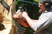 Skulptur aus Baumstamm