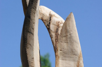 EIne später gekalkt und geflammte Skulptur im rohen Zustand